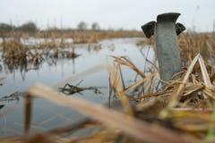Sur le lac Photographie stock