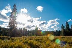 19 sur le Mt Hood Heritage Trail Image libre de droits