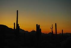Sur le pensionnaire mexicain après coucher du soleil Image stock