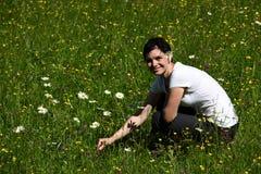 Sur le pré fleuri photo stock