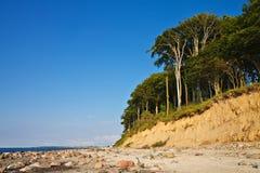 Sur le rivage Photo libre de droits