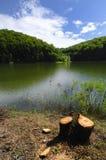 Sur le rivage de lac Photographie stock