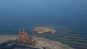 Sur le rivage le golfe de Finlande Hanko, Finlande banque de vidéos