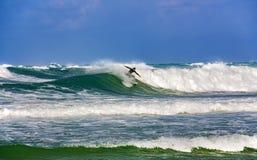 Sur le temps approprié de la mer Méditerranée pour surfer photo libre de droits
