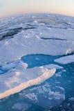 Sur le toit du monde - Pôle Nord Photographie stock libre de droits