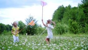 Sur le vert, la pelouse de camomille, enfants fonctionnent autour avec des filets, essai pour attraper des papillons, sauterelles banque de vidéos