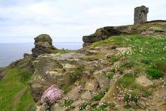 Sur les falaises irlandaises de Moher Images stock