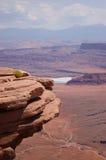 Sur les roches ! Images stock