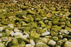 Sur les roches photographie stock
