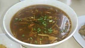 Sur och kryddig soppa Royaltyfria Bilder