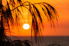 Sun rising over Main Beach (Queensland, Australia) Royalty Free Stock Photo