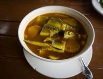 Sur soppa som göras av tamarindfruktdeg med tilapia eller Royaltyfria Bilder