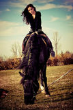 Sur un horseback images libres de droits