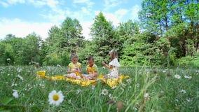 Sur un pré de camomille, près d'une forêt, sur l'herbe, il y a trois enfants sur un plaid jaune, ils boivent les boissons douces banque de vidéos