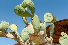 Sur un smiley de sourire de jour ensoleillé de cactus Image libre de droits