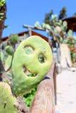 Sur un smiley de sourire de jour ensoleillé de cactus Images stock