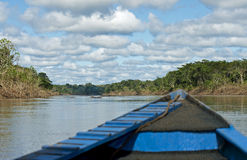 Sur une rivière de forêt tropicale Photographie stock libre de droits