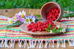 Sur une serviette tient la cuvette en bois et une tasse avec les fraisiers communs Images stock