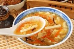 sur varm soup Royaltyfri Fotografi