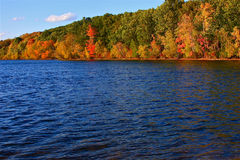 Sur Walden en automne Images stock