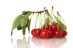Sura Cherry på white Arkivfoto