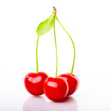 Sura Cherry som isoleras på vit bakgrund Arkivbilder