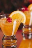 Sura coctailar för whisky Arkivbild