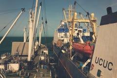 Surcharge des poissons congelés du bateau de pêche à bord d'un navire de transport au port d'ancrage de Dakhla, Maroc photographie stock