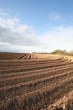 Surcos arados del campo Imagenes de archivo