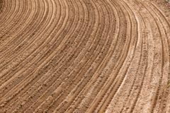 Surcos curvados tierra de la arena Fotografía de archivo