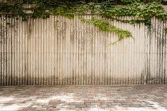 Surcos verticales con la hiedra Fotografía de archivo libre de regalías