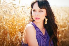 Portrait of a beautiful woman in a wheat field. Sure look portrait of a beautiful woman in a wheat field on a warm summer photo Stock Photography