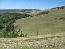 Sureanu alpine meadow. Alpine meadow from Sureanu Mountains Royalty Free Stock Images