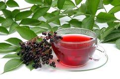 Sureau 02 de thé Photographie stock