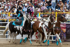 Sureshot Acts - Sisters, OR Rodeo 2011 Royalty Free Stock Photo