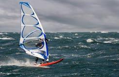 Free Surf Stock Photos - 3536753