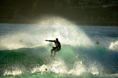 Surf Action Royalty Free Stock Image