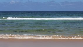 Surf beach in Northern NSW, Australia stock footage