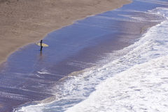 Surf Begin. A surfer walks into the waves Royalty Free Stock Images