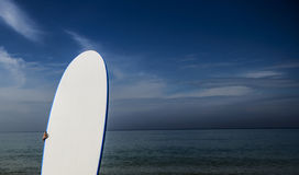 Surf board on the beach up close Royalty Free Stock Photos