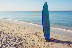 Surf board laying on the sand near the sea Royalty Free Stock Images