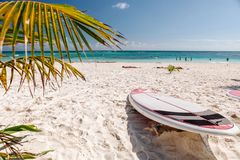 Surf board lie on the beach against the backdrop of the turquoise sea. Playa del Carmen, Mexico royalty free stock images
