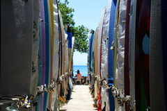 Surf board. Stock image of surf board on the Wikiki Beach, Hawaii Royalty Free Stock Photos