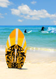 Surf Board and Surfers Stock Images