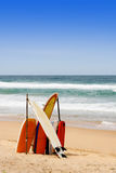 Surf boards. Stock Image