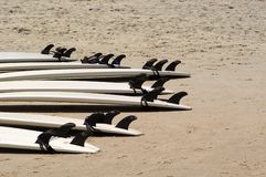 Surf Boards. Lined up on the beach waiting for a trip to the water.  Photographed during a surfing lesson on Emerald Isle, North Carolina Stock Image