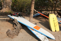 Surf Boards. And boogie boards lay on the tropical shore of Costa Rica against an old tree root and a hammock tied to a palm tree Royalty Free Stock Photo