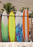 Surf boards. Lined up ready for use at the beach Royalty Free Stock Photo