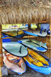 Surf boards, active sport, surf Risky for professionals Royalty Free Stock Image