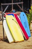 Surf boards available for rent stock photography